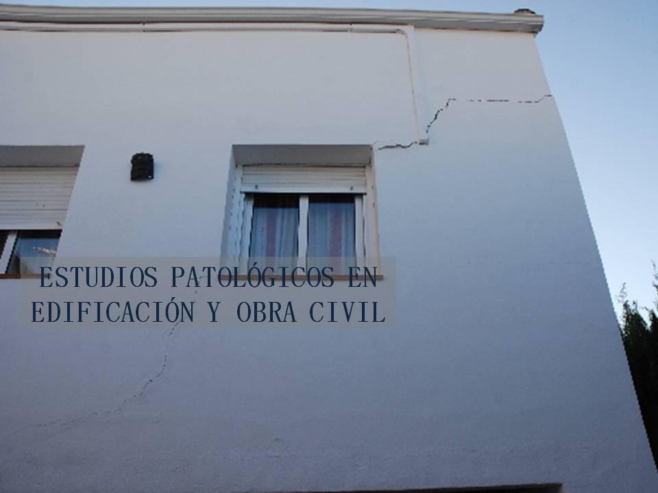 Estudios patológicos en edificación y obra civil